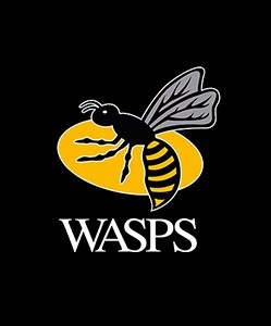 wasps rugby logo
