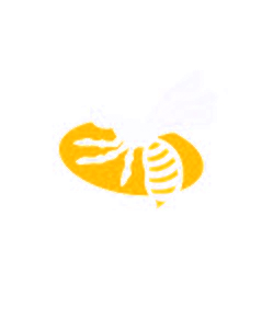 Wasps Discussion Forums